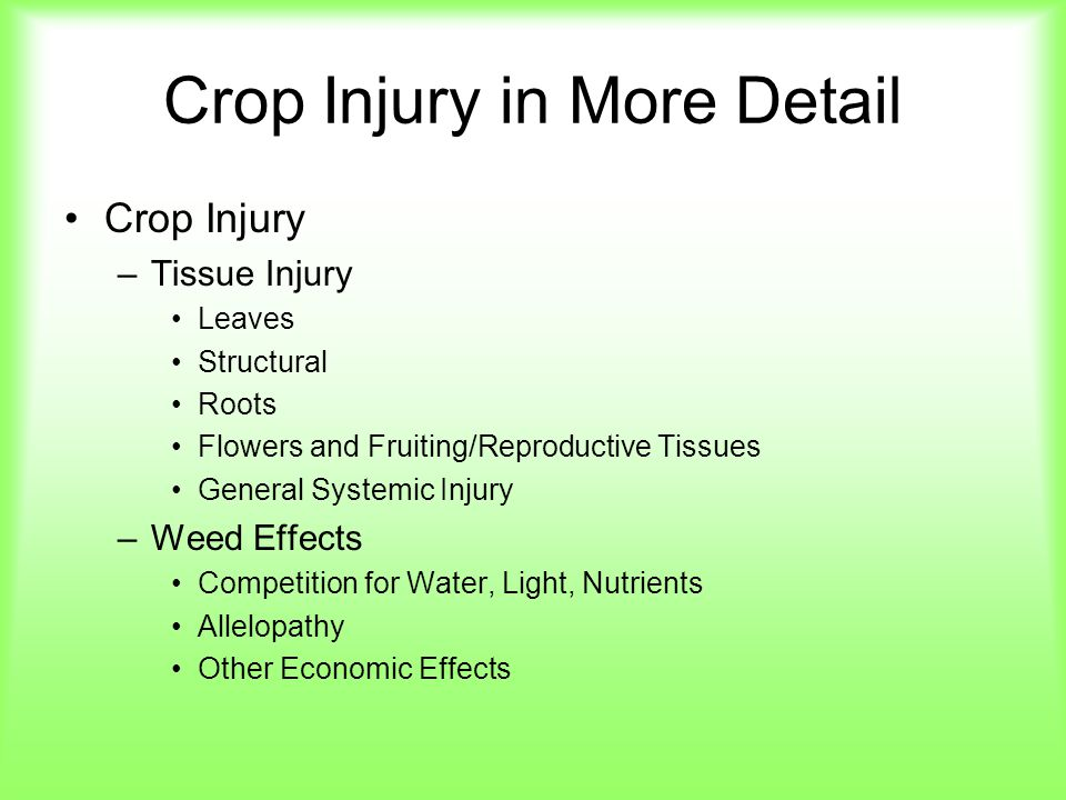 Crop Injury in More Detail