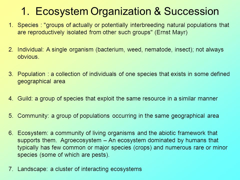 1. Ecosystem Organization & Succession