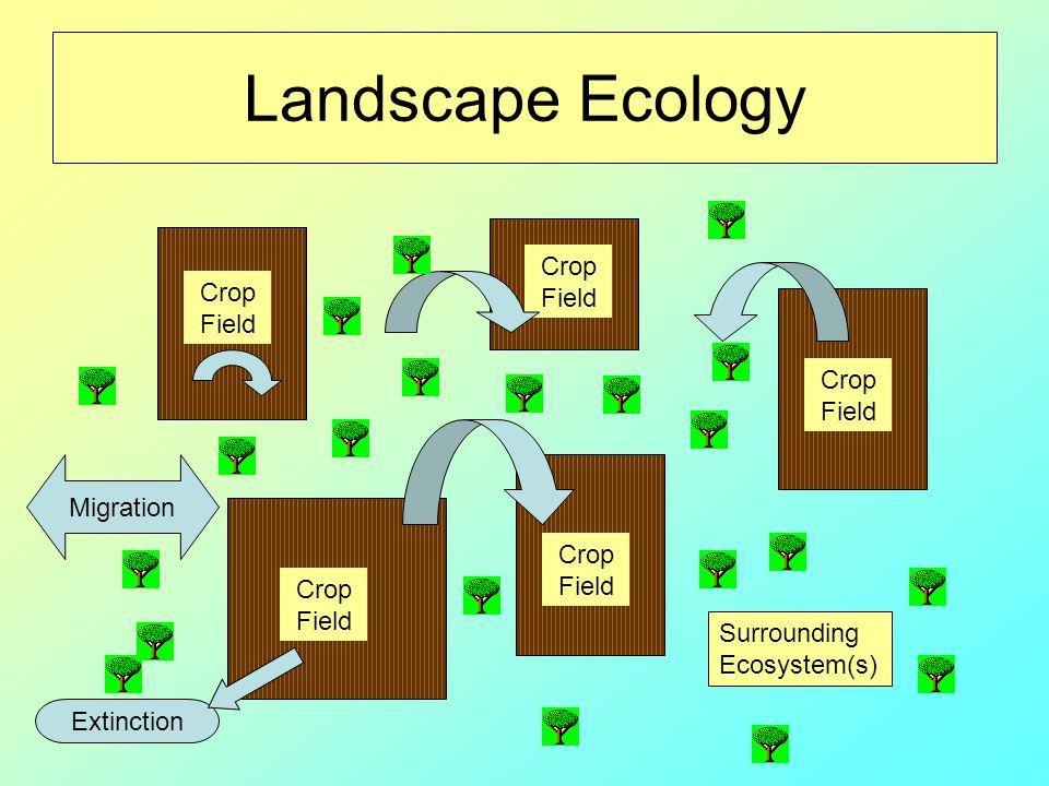 Landscape Ecology Crop Field Crop Field Crop Field Migration