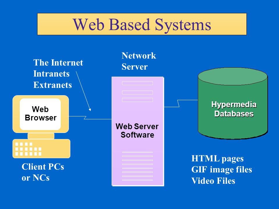 Web Based Systems Network Server The Internet Intranets Extranets