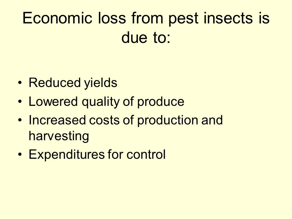 Economic loss from pest insects is due to:
