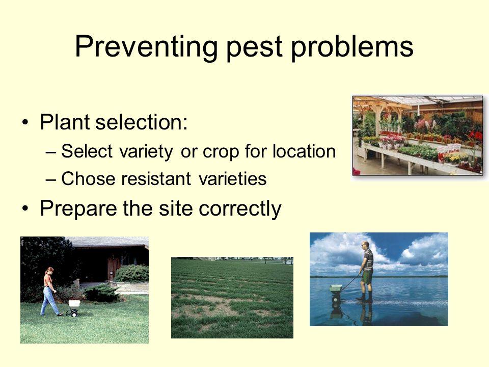 Preventing pest problems