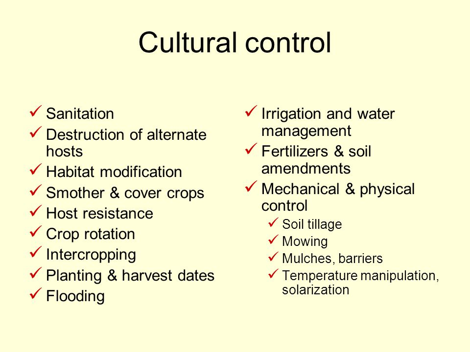 Cultural control Sanitation Destruction of alternate hosts