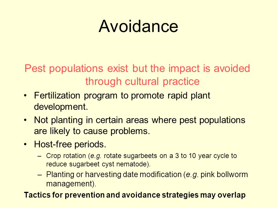 Avoidance Pest populations exist but the impact is avoided through cultural practice. Fertilization program to promote rapid plant development.