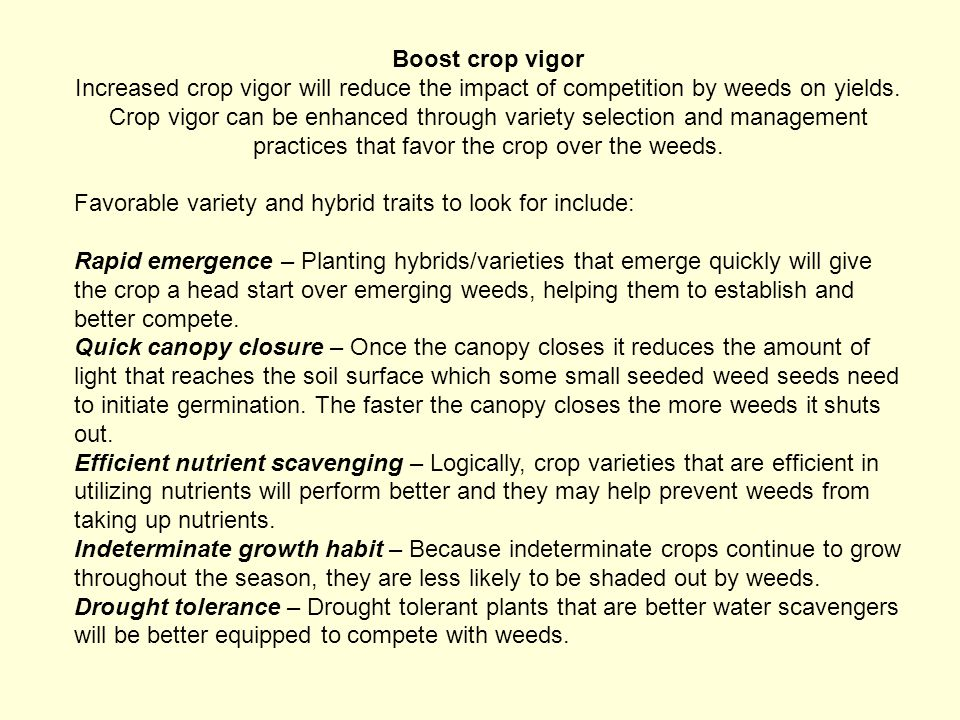 Boost crop vigor Increased crop vigor will reduce the impact of competition by weeds on yields. Crop vigor can be enhanced through variety selection and management practices that favor the crop over the weeds.