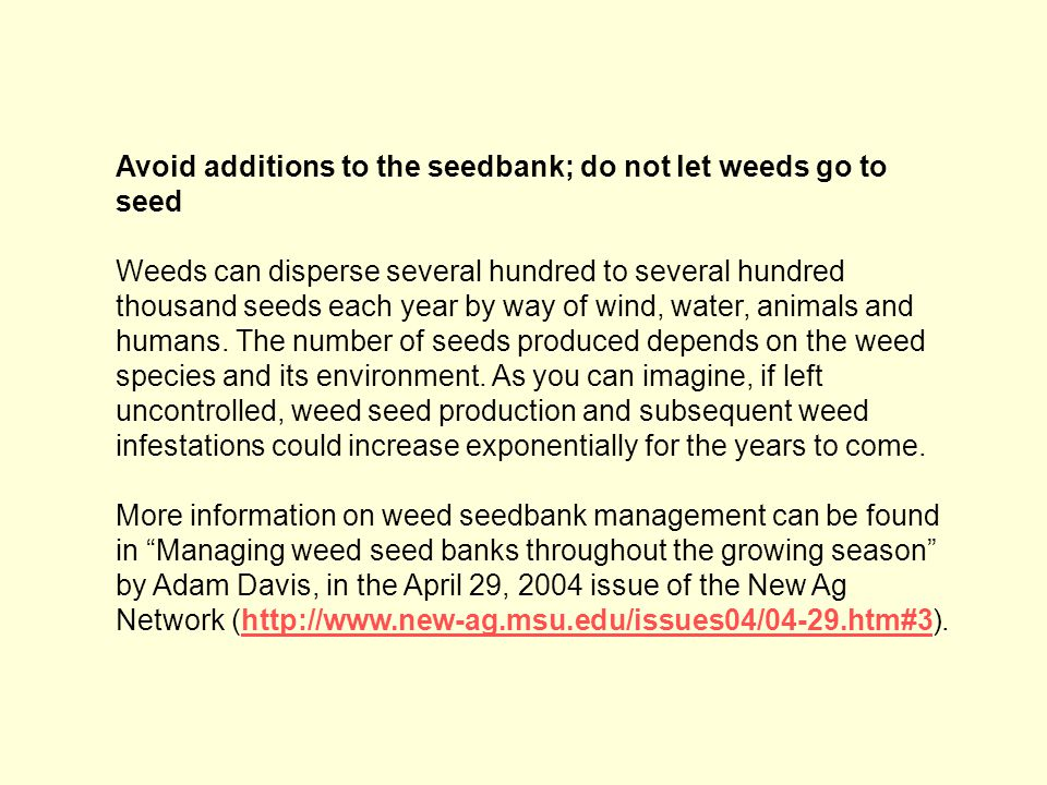 Avoid additions to the seedbank; do not let weeds go to seed