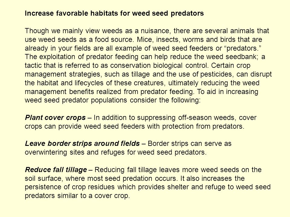 Increase favorable habitats for weed seed predators