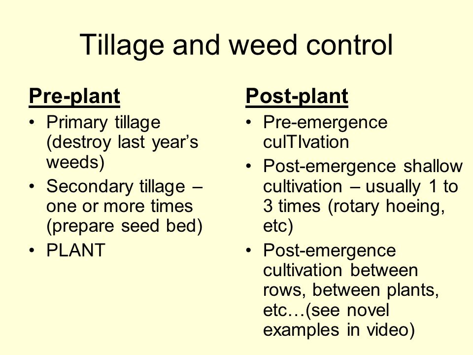 Tillage and weed control
