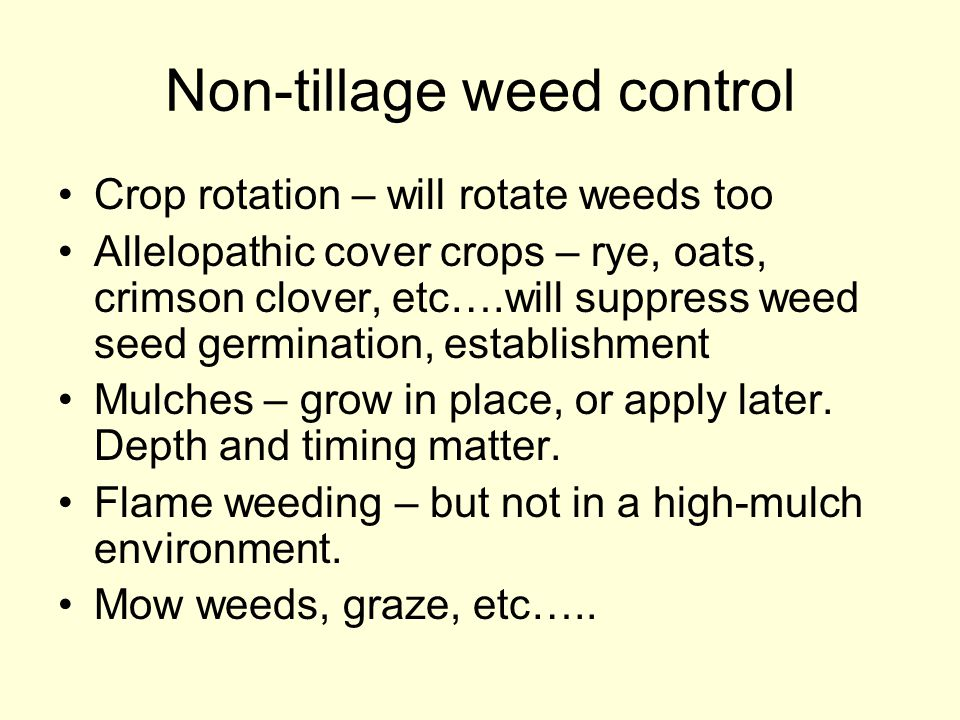 Non-tillage weed control