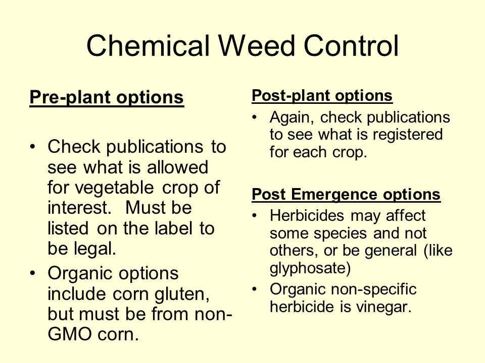Chemical Weed Control Pre-plant options