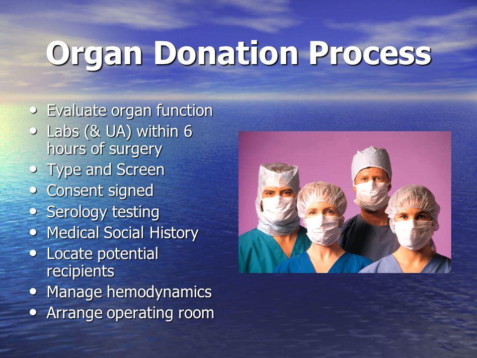 Organ Donation Process