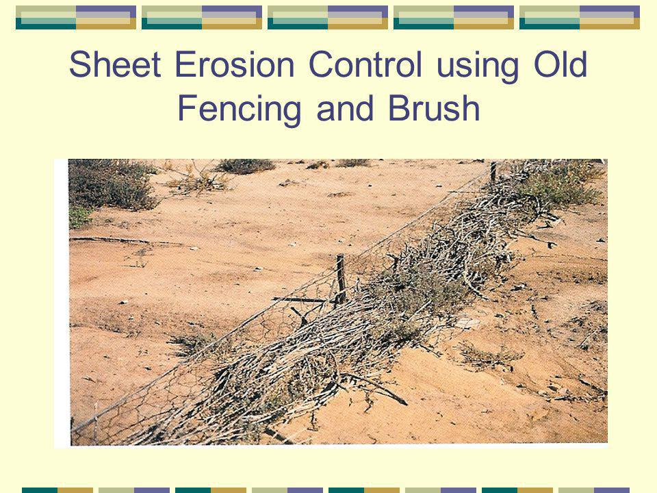 Sheet Erosion Control using Old Fencing and Brush