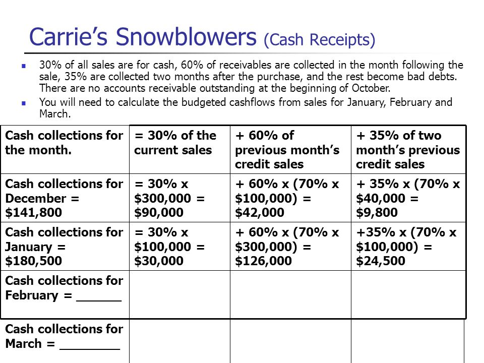 Carrie's Snowblowers (Cash Receipts)
