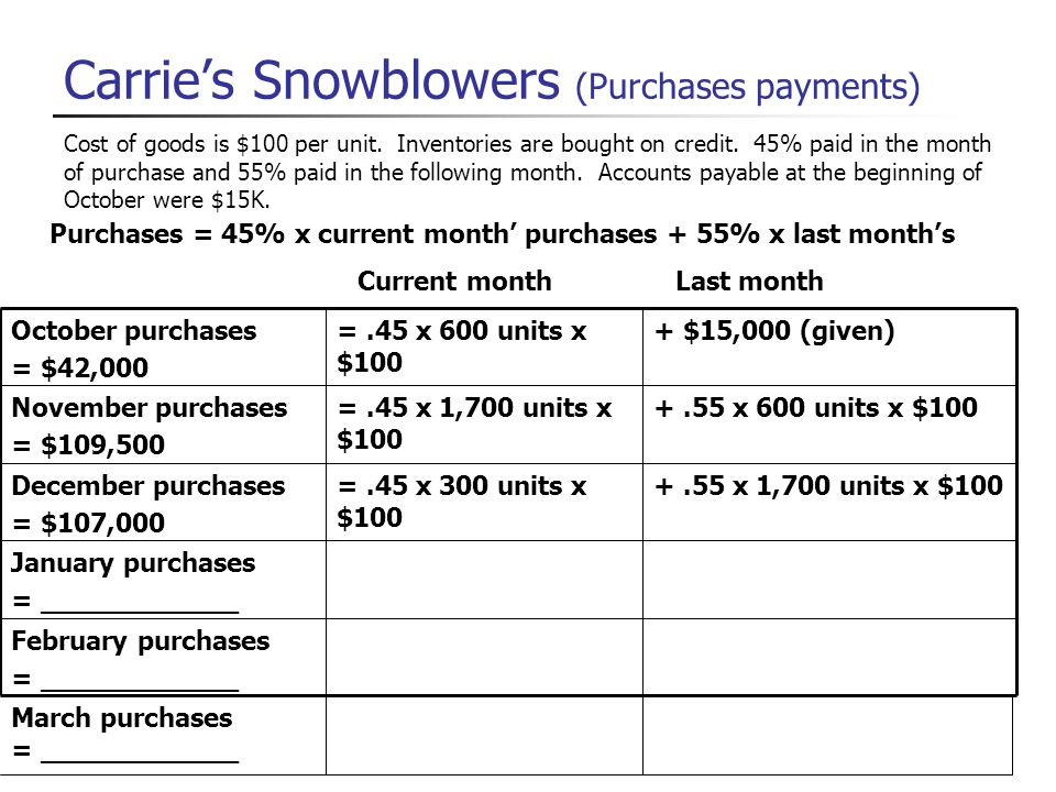 Carrie's Snowblowers (Purchases payments)
