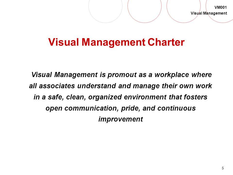 Visual Management Charter