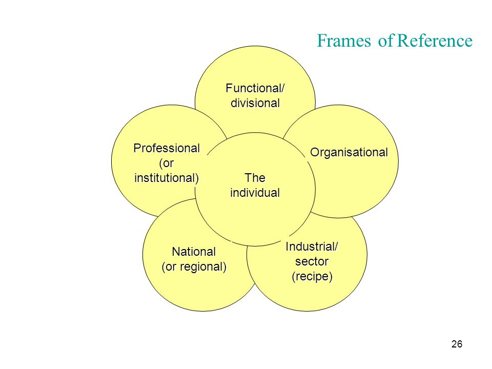 Frames of Reference Functional/ divisional Professional Organisational