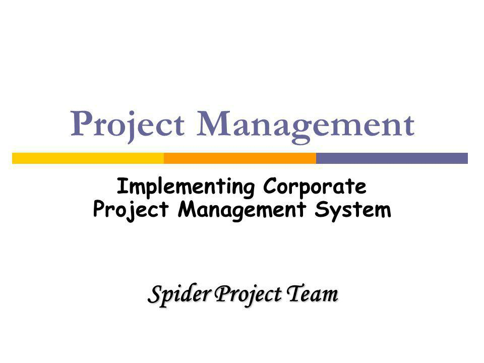 Implementing Corporate Project Management System Spider Project Team
