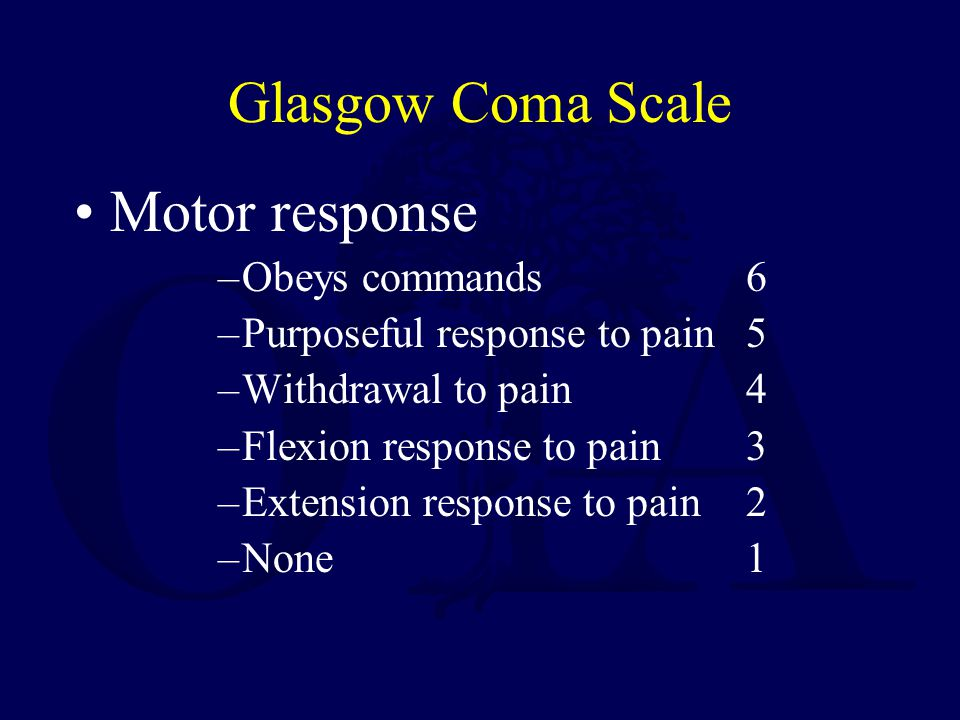 Glasgow Coma Scale Motor response Obeys commands 6