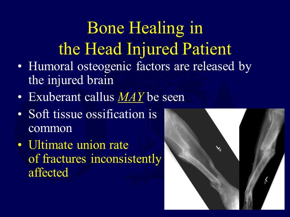 Bone Healing in the Head Injured Patient