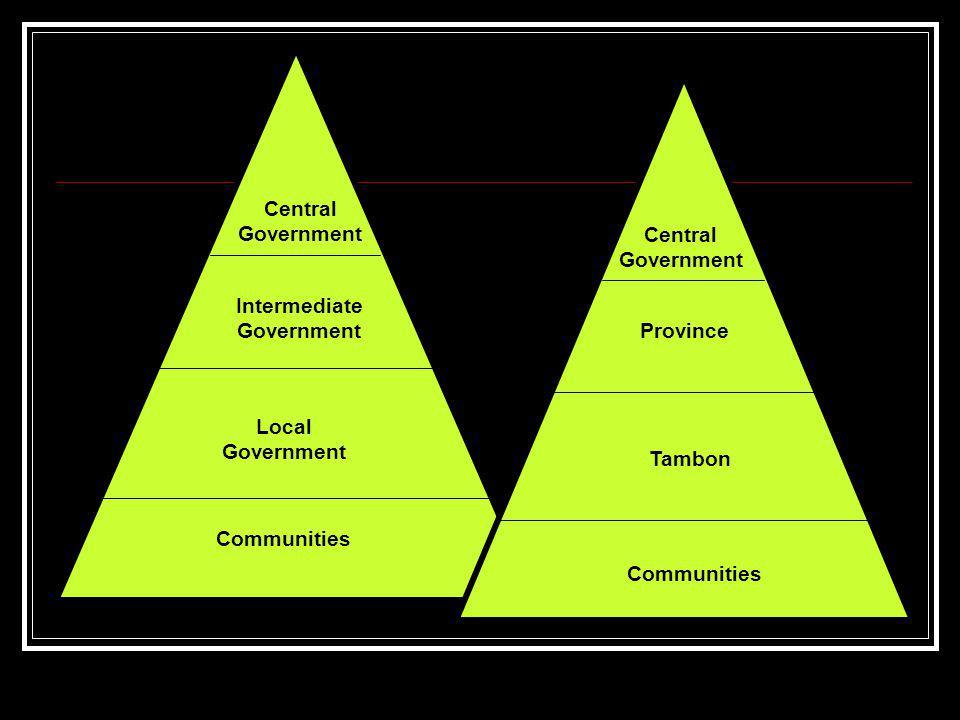 Intermediate Government