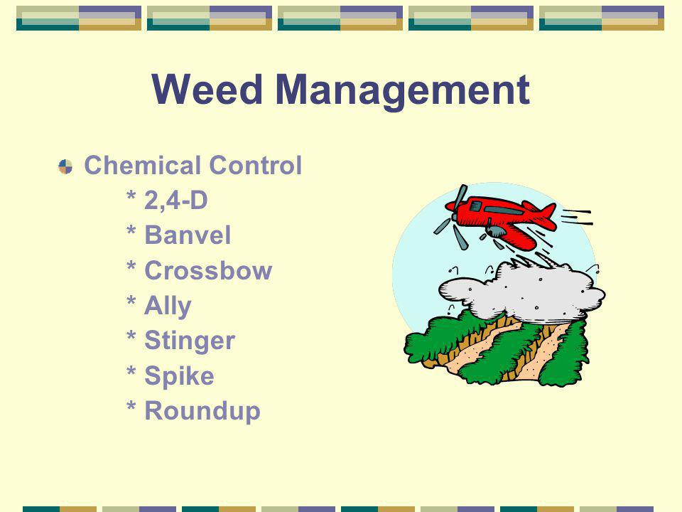 Weed Management Chemical Control * 2,4-D * Banvel * Crossbow * Ally