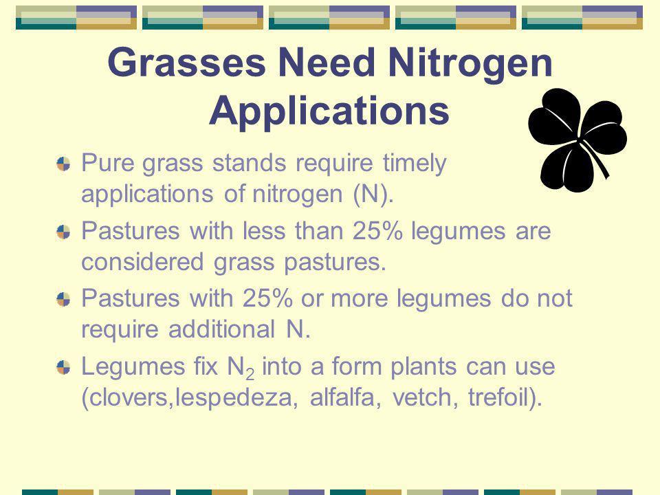 Grasses Need Nitrogen Applications