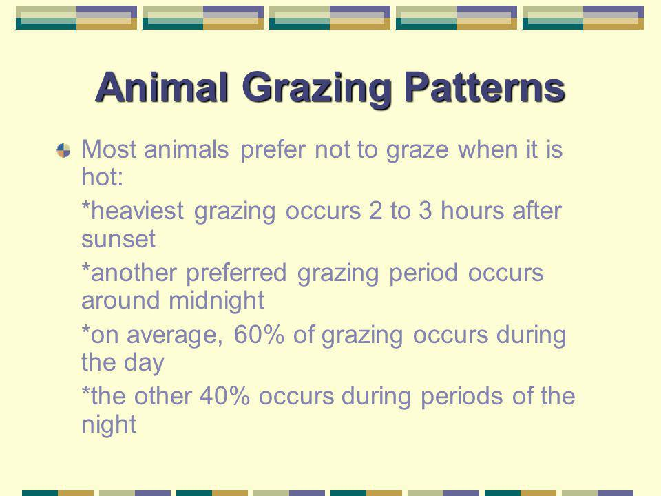 Animal Grazing Patterns