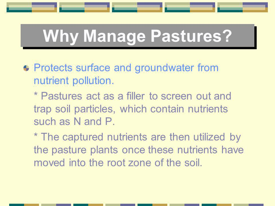 Why Manage Pastures Protects surface and groundwater from nutrient pollution.