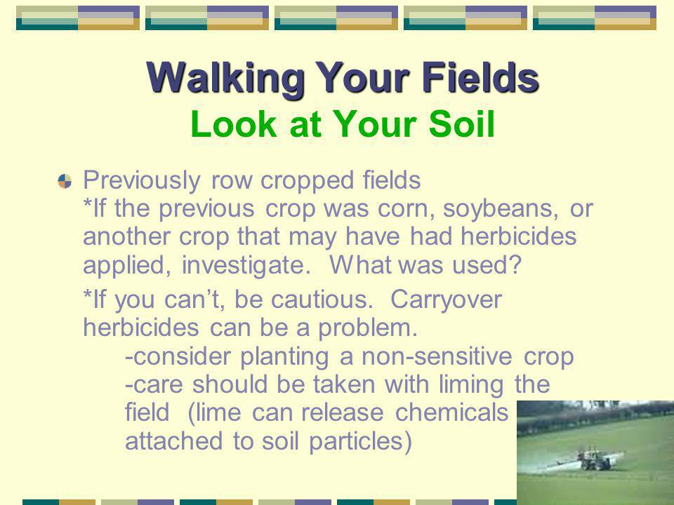 Walking Your Fields Look at Your Soil