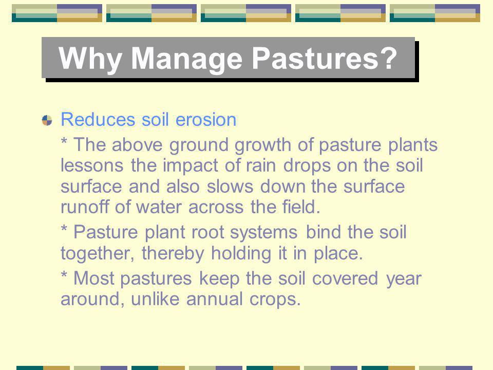 Why Manage Pastures Reduces soil erosion