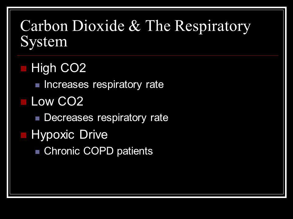 Carbon Dioxide & The Respiratory System