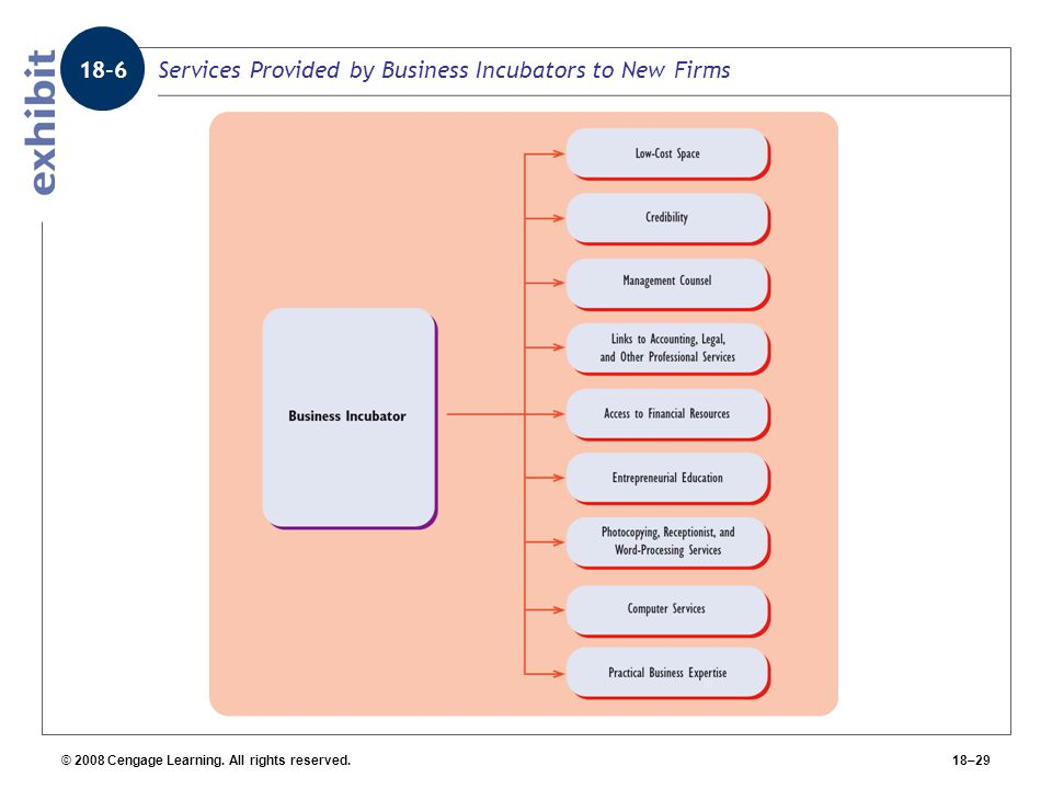 Services Provided by Business Incubators to New Firms