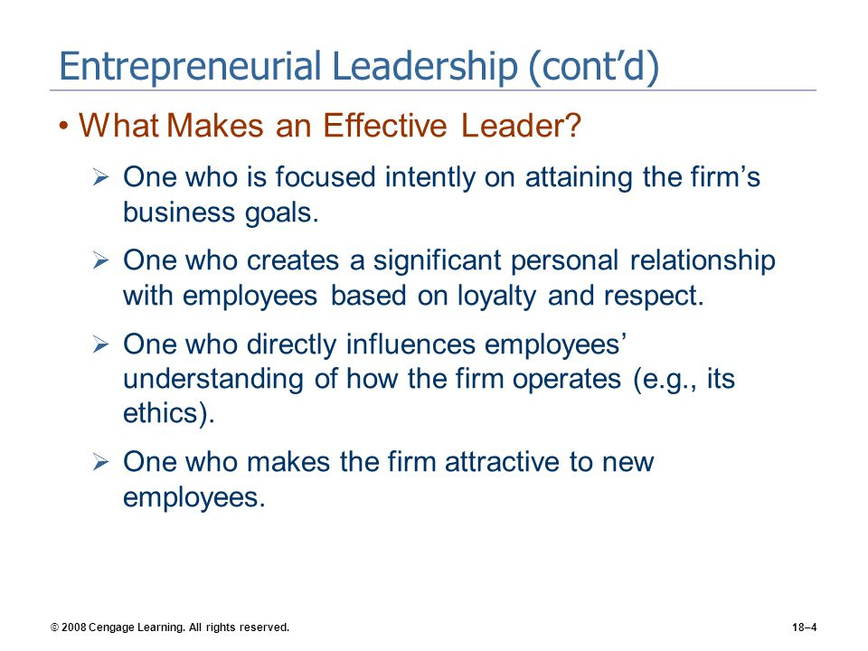 Entrepreneurial Leadership (cont'd)