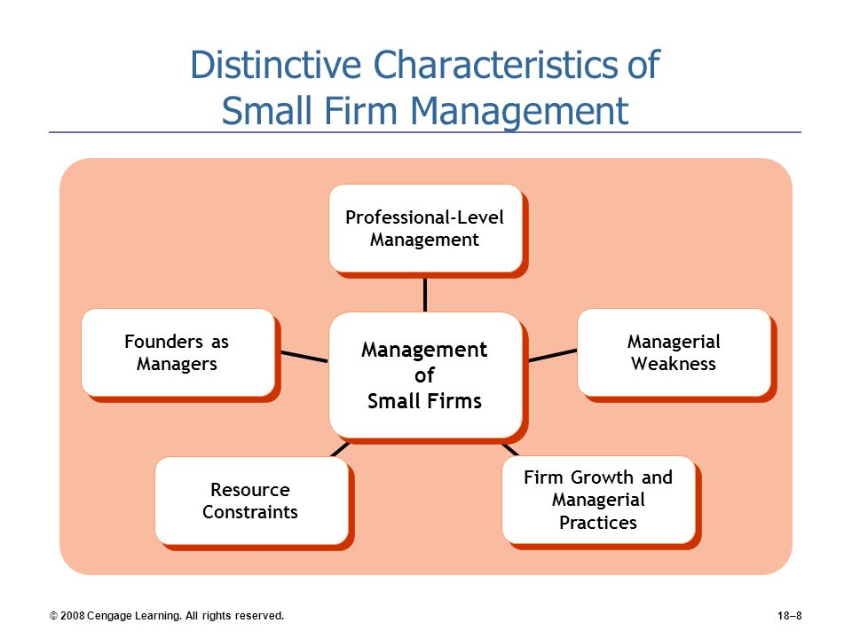 Distinctive Characteristics of Small Firm Management