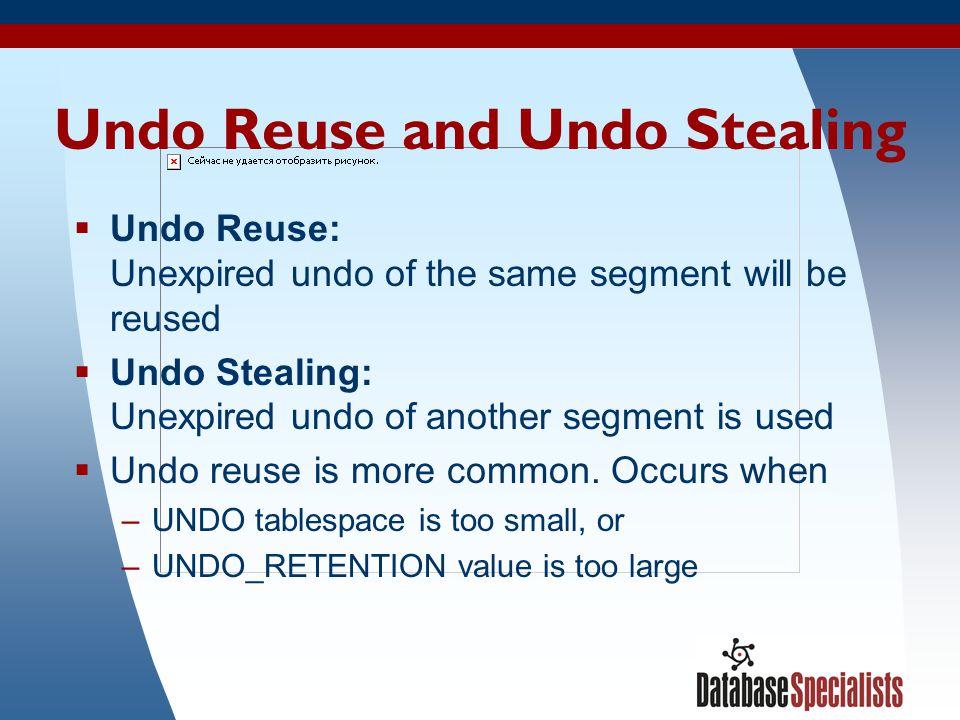 Undo Reuse and Undo Stealing