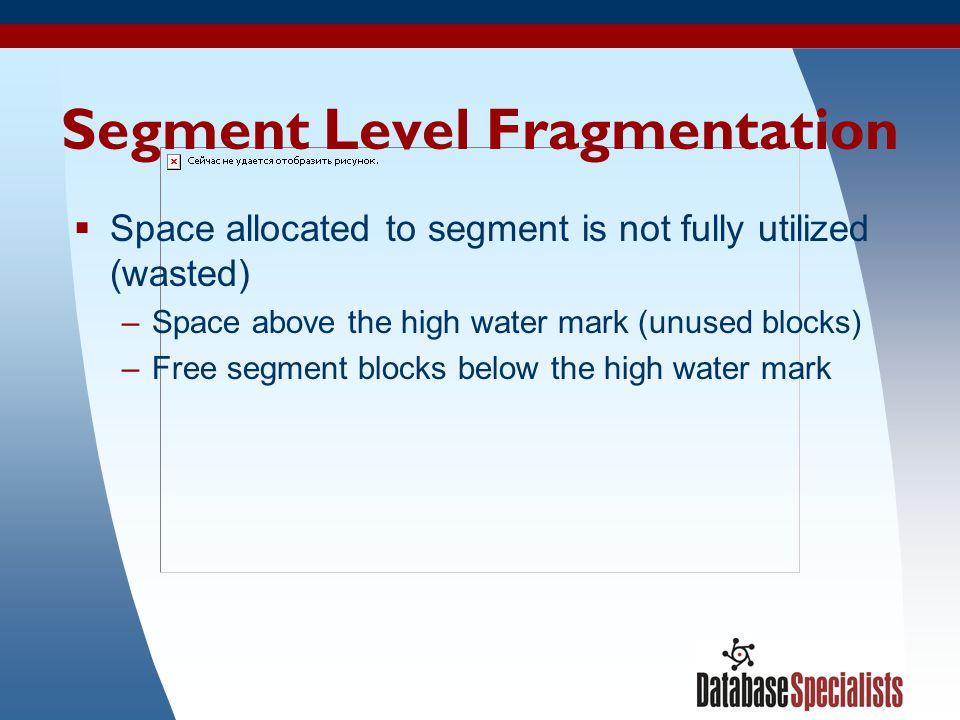 Segment Level Fragmentation
