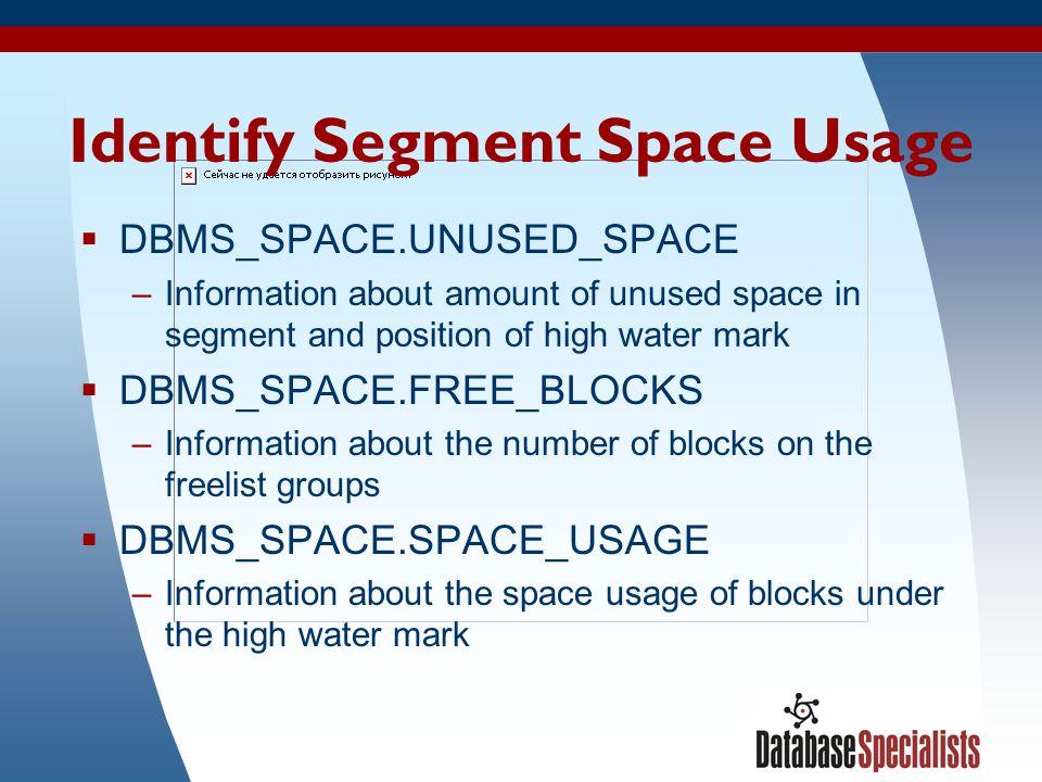 Identify Segment Space Usage