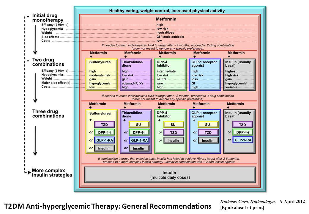 T2DM Anti-hyperglycemic Therapy: General Recommendations