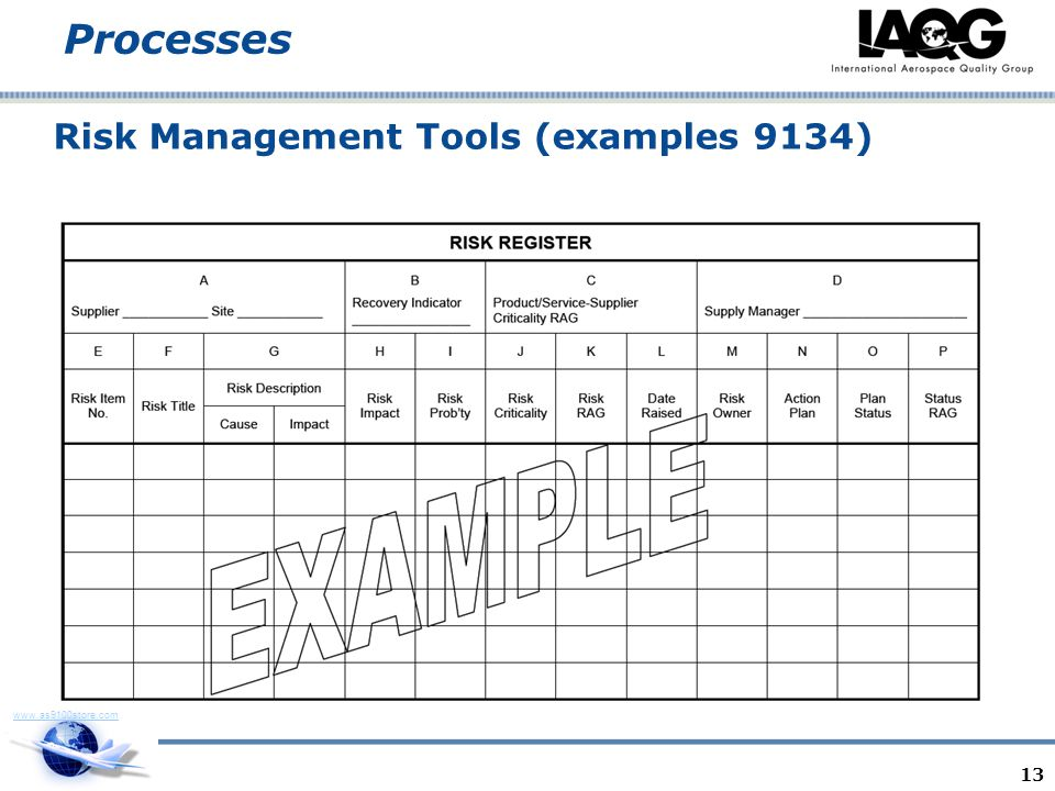 Risk Management Tools (examples 9134)