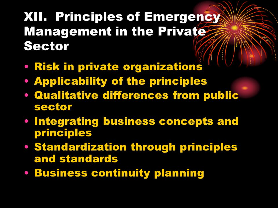 XII. Principles of Emergency Management in the Private Sector