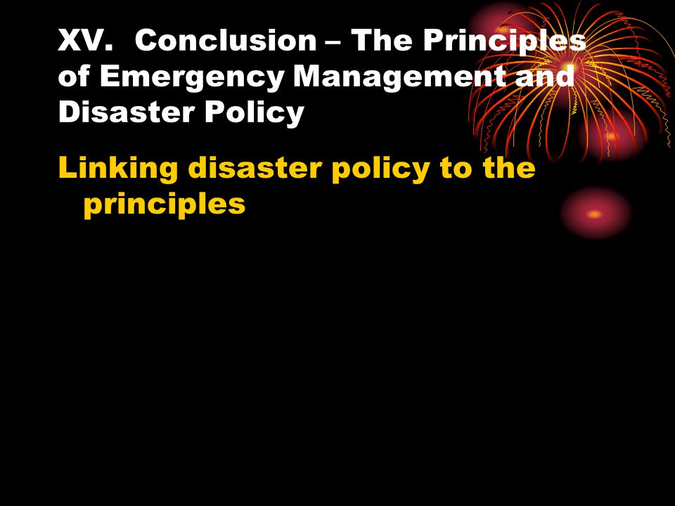 XV. Conclusion – The Principles of Emergency Management and Disaster Policy