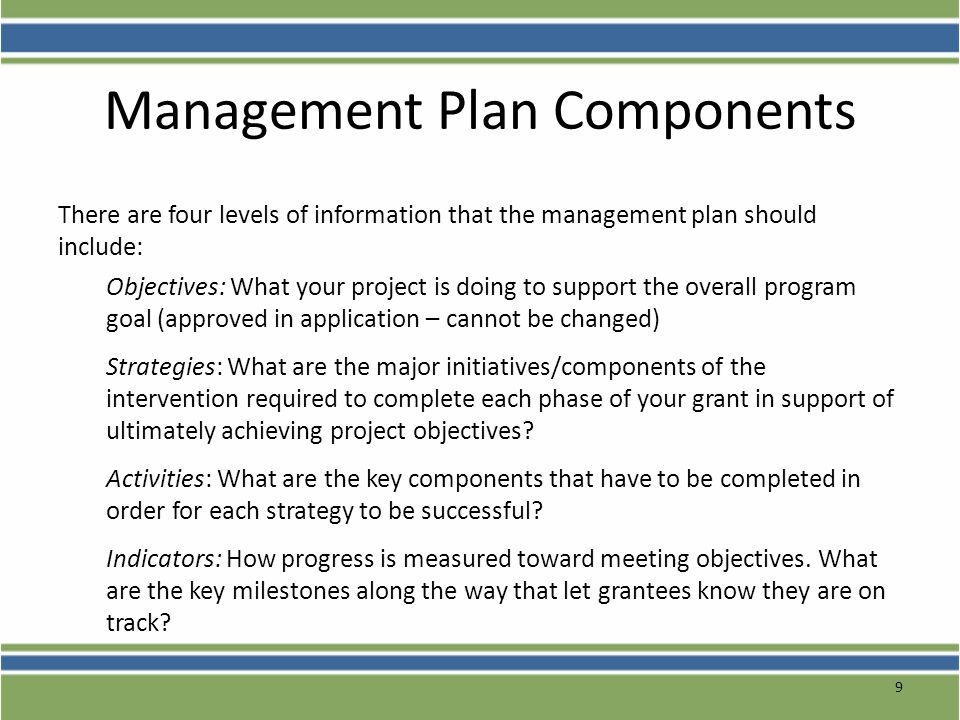 Management Plan Components