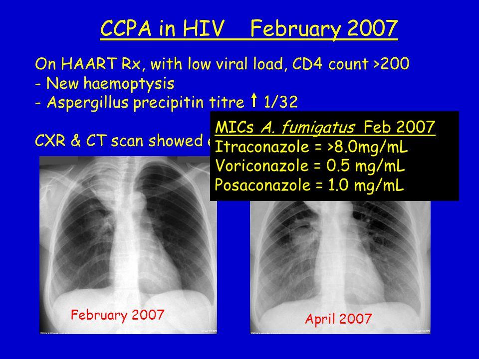 CCPA in HIV February 2007