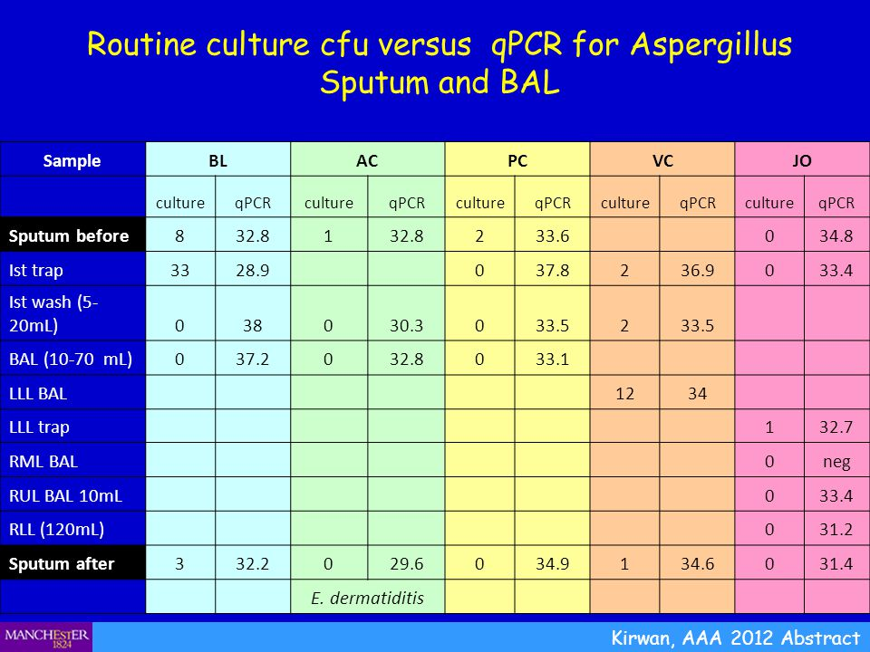 Routine culture cfu versus qPCR for Aspergillus Sputum and BAL