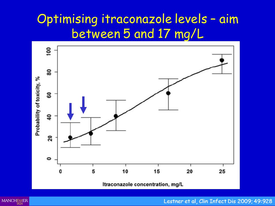 Optimising itraconazole levels – aim between 5 and 17 mg/L