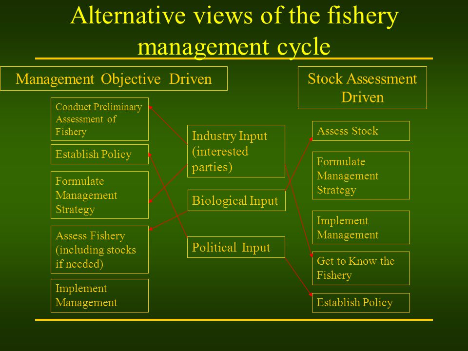 Alternative views of the fishery management cycle