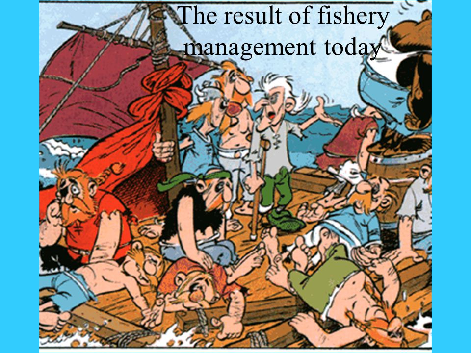 The result of fishery management today