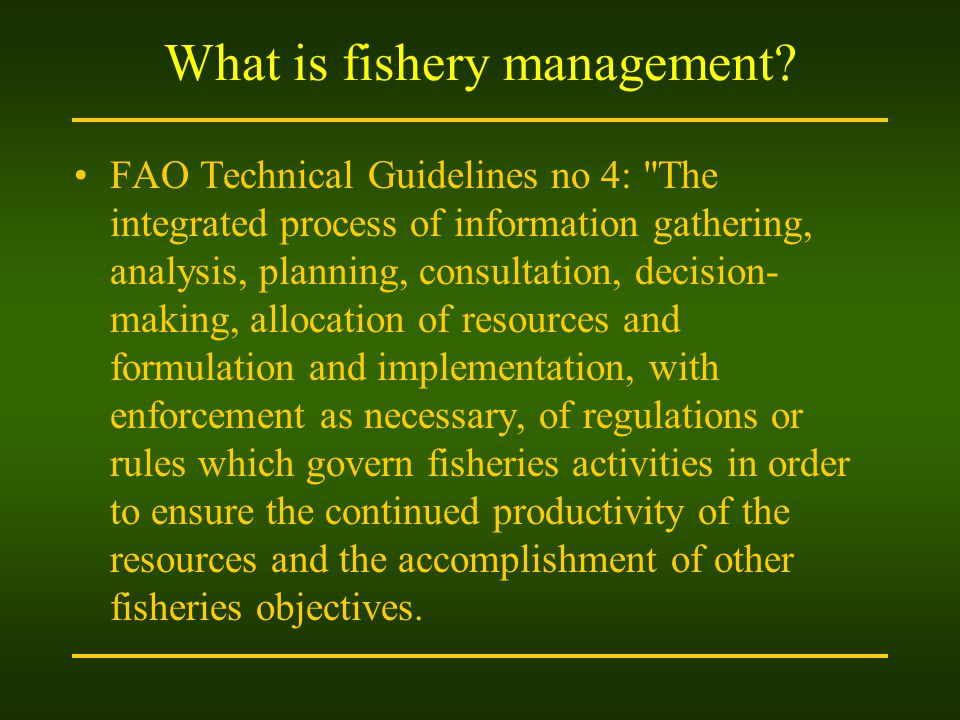 What is fishery management