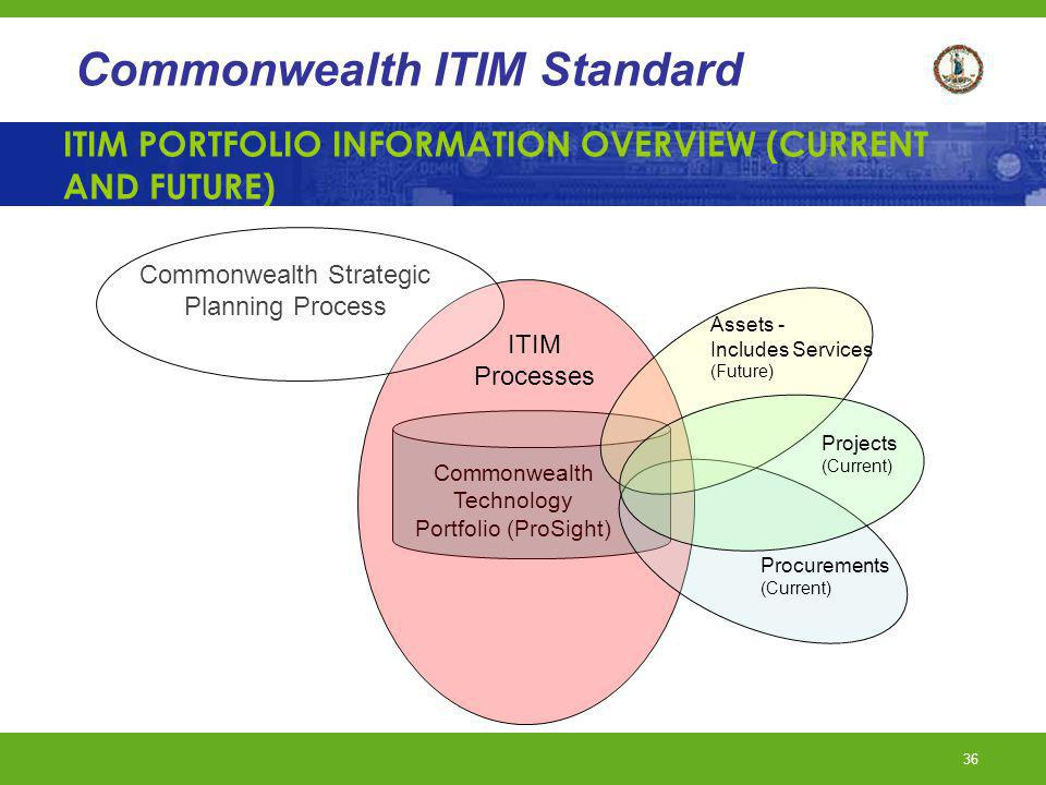 ITIM PORTFOLIO INFORMATION OVERVIEW (CURRENT AND FUTURE)