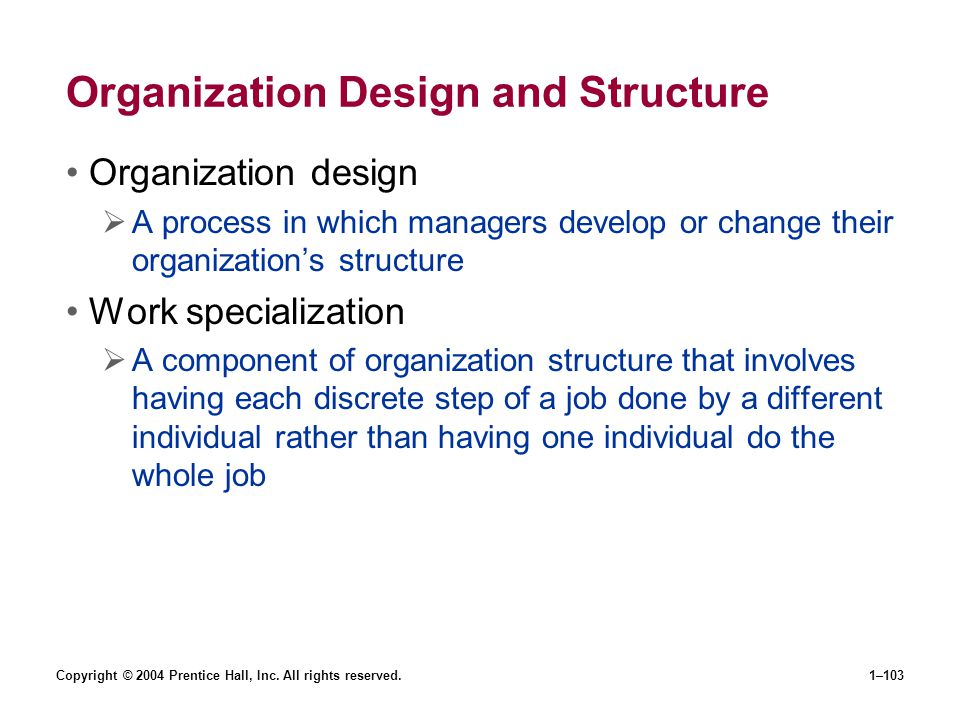 Organization Design and Structure